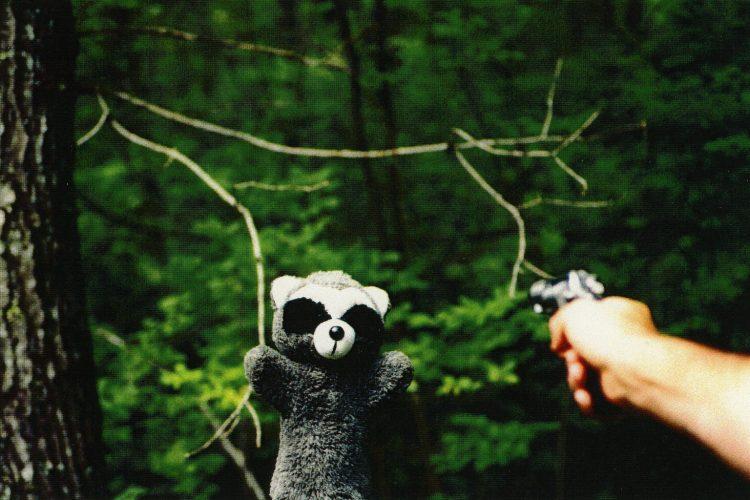 Raccoon by Richard Erickson